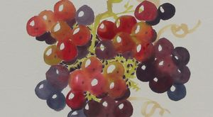 Sun Ripened Grapes