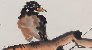 Solitary Bird on Branch