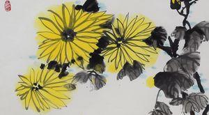 Yellow Chrysanthemums in the Rain